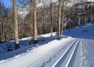 En el espacio Nórdico de Le Somport (www.lesomport.com), podrás disfrutar del esquí nórdico en sus 25 km. de pistas de fondo marcadas, con 8 circuitos de diferentes niveles dirigidos tanto a principiantes como a expertos, para practicar las técnicas de clásico y patinador (skating) y de paseos con raquetas en sus 5 km. de circuito. O si lo prefieres, realizar agradables excursiones nórdicas con esquís o raquetas por nieve virgen.